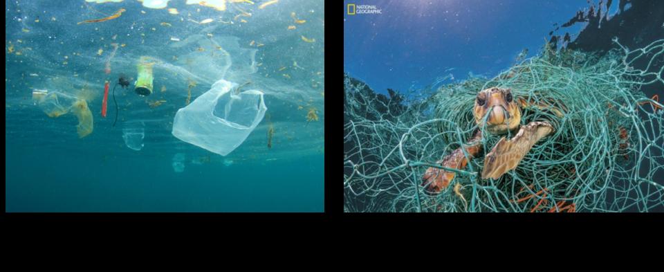 海洋 プラスチック ごみ 対策 アクション プラン